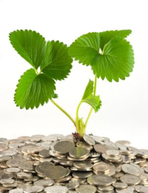 سرمایه گذاری در بازاريابي
